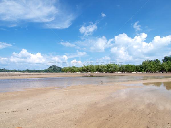 Strand Baum tropischen Strand südlich Thailand Himmel Stock foto © jakgree_inkliang