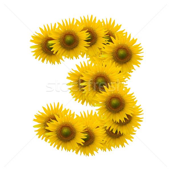 Güneş çiçek alfabe yalıtılmış beyaz doğa Stok fotoğraf © jakgree_inkliang