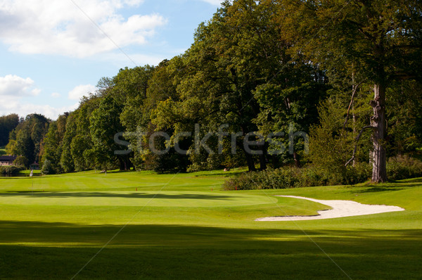 Campo da golf foresta verde bandiera golf sport Foto d'archivio © jamdesign
