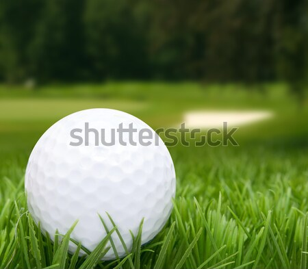 Golf Ball Stock photo © jamdesign