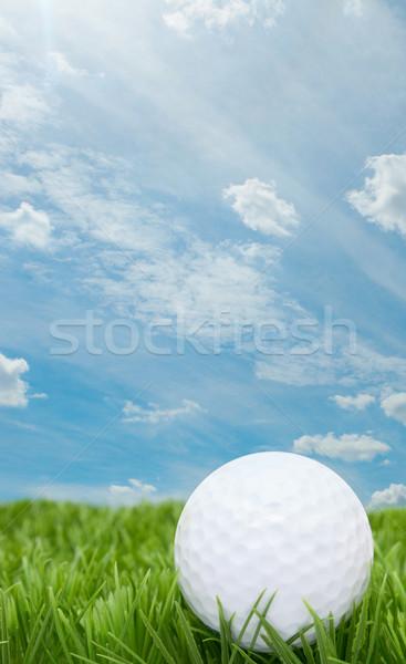 Golfball Gras blau Sommer Himmel Wolken Stock foto © jamdesign