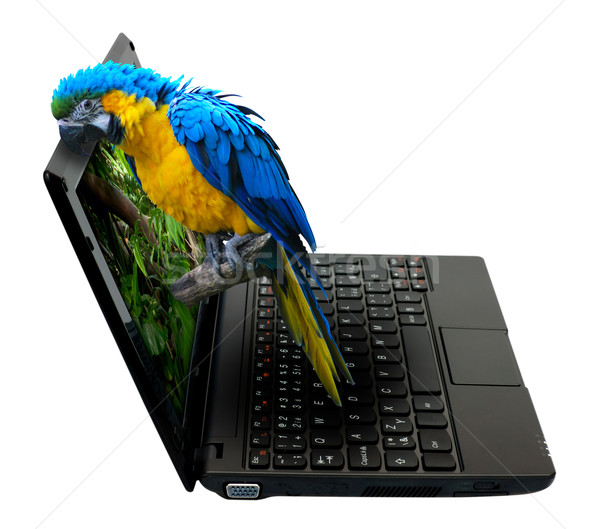 3D Notebook Stock photo © jamdesign
