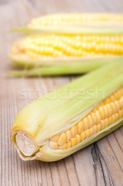 Corn Cobs Stock photo © jamdesign