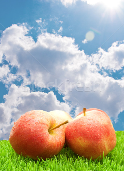 Stock photo: Red Apples on Grass
