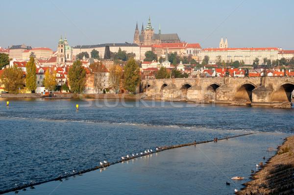 Prag Burg Brücke Fluss Tschechische Republik Reise Stock foto © jamdesign