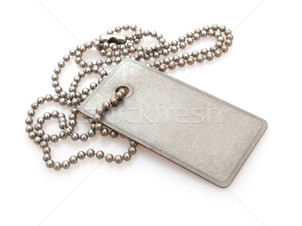 Dog Tag Stock photo © jamdesign