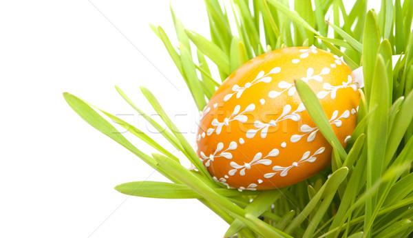 Húsvéti tojás fű kézzel készített narancs húsvét színes tojás Stock fotó © jamdesign