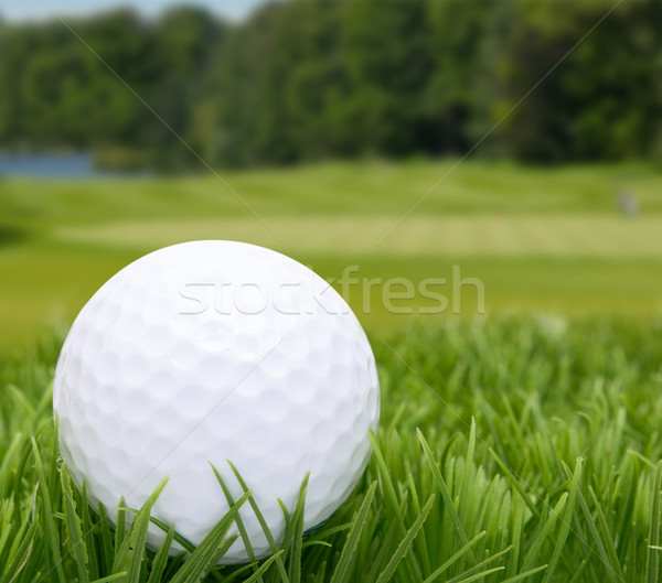 Balle de golf herbe golf sport nature domaine Photo stock © jamdesign