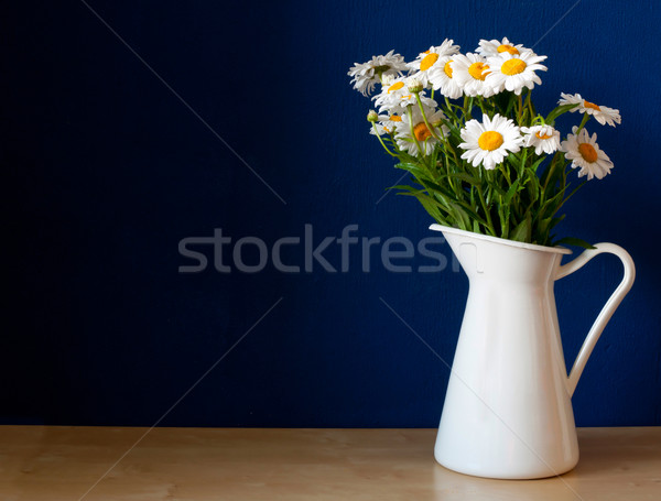 Oxeye Daisies in the Pitcher Stock photo © jamdesign