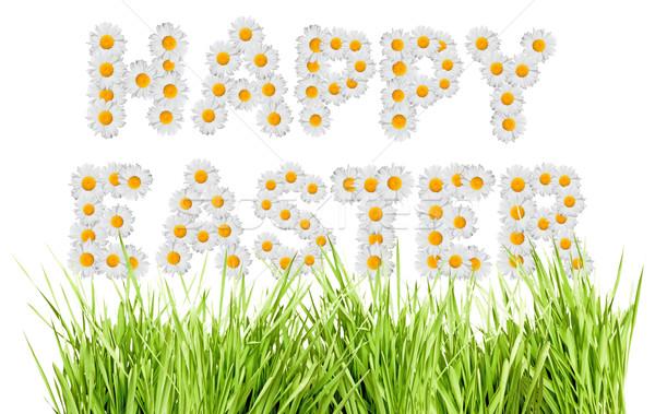 Frohe Ostern Zeichen Gänseblümchen Blumen Gras isoliert Stock foto © jamdesign