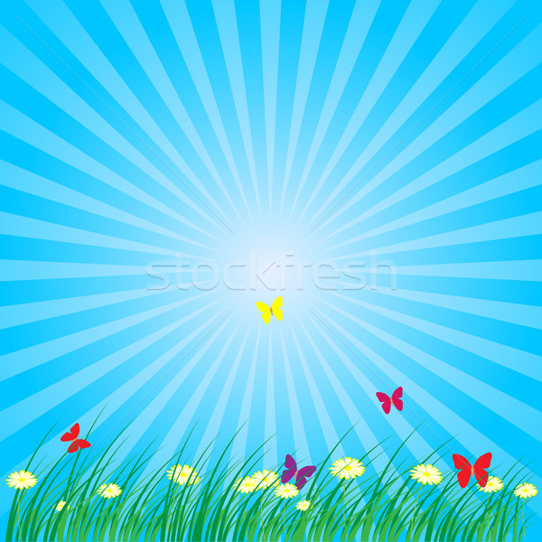 Summer - Spring Nature Background Stock photo © jamdesign