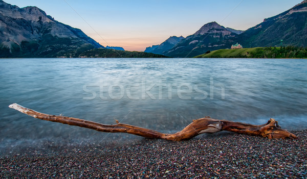 Waterton Lakes Log Stock photo © jameswheeler