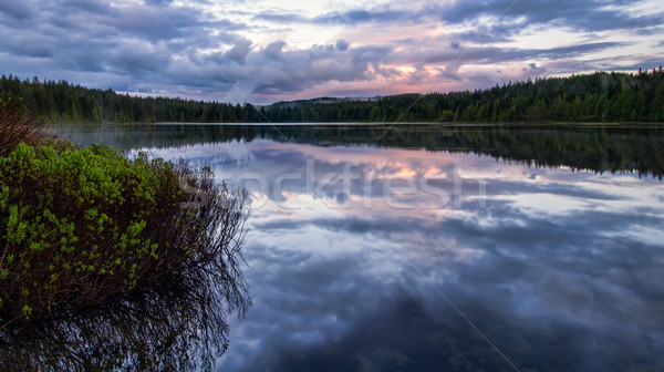 Serene lake reflection with purple sky Stock photo © jameswheeler