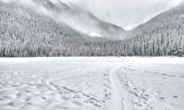 Dondurulmuş göl iz dağlar tren dağ Stok fotoğraf © jameswheeler