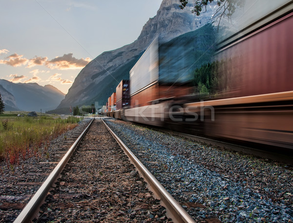 Train in Yoho National Park Near Kicking Pass Stock photo © jameswheeler