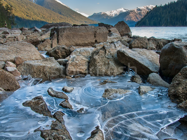 Cheakamus Lake Ice Along Shore Stock photo © jameswheeler