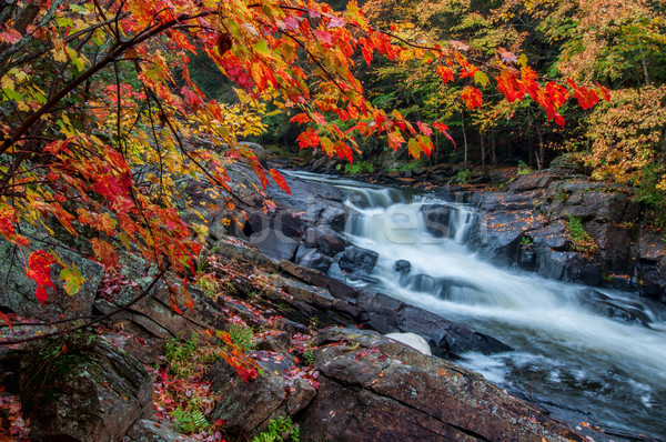 Unique Waterfall Framed By Red Leaves Stock photo © jameswheeler