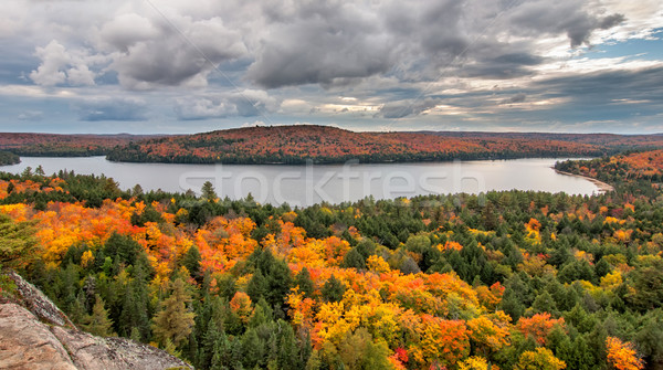 View Overlooking Lake and Changing Fall Trees Stock photo © jameswheeler