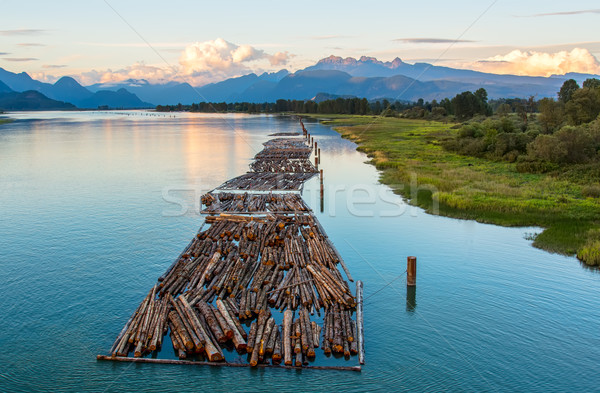 Logs on River and Distant Mountains Stock photo © jameswheeler