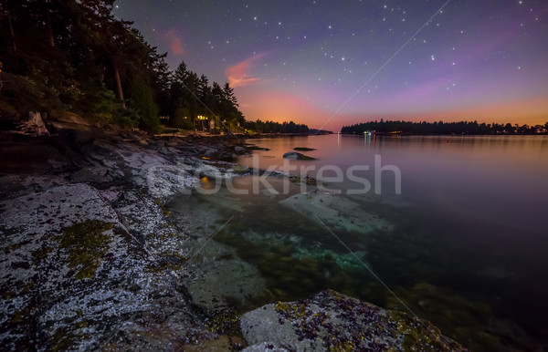 Rocky Coast at night with Purple Sky Stock photo © jameswheeler
