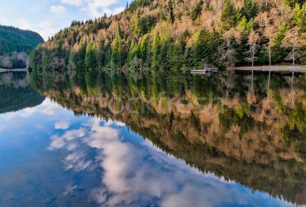 Göl orman yansıma İngilizler gökyüzü su Stok fotoğraf © jameswheeler