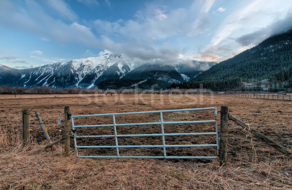 Fence Gate with Snowy Mountains Stock photo © jameswheeler