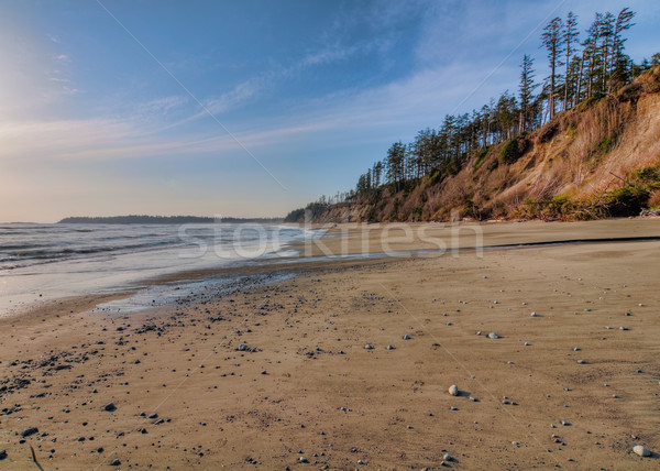 Vast Empty Beach With Pebbles Stock photo © jameswheeler