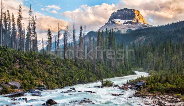 Rockey Peak in Yoho National Park Stock photo © jameswheeler