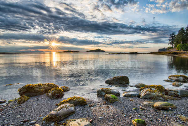 Coastal Sun Star With Rocks Stock photo © jameswheeler