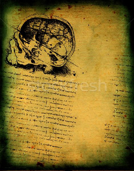 Anatomy art Stock photo © janaka