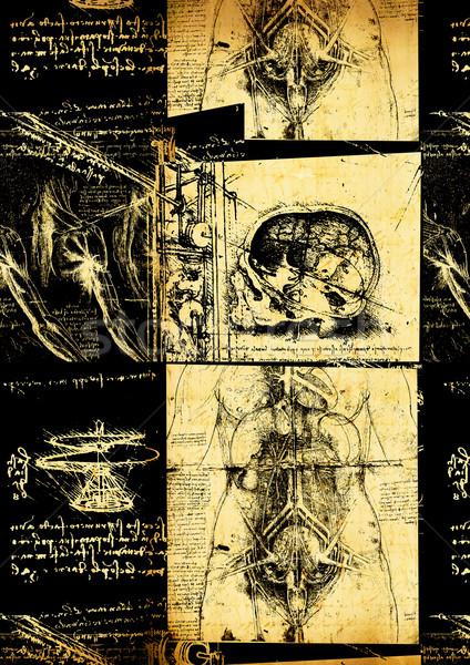 Anatómia művészet papír textúra férfi férfiak Stock fotó © janaka