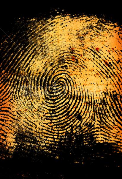 Thumbprint Stock photo © janaka