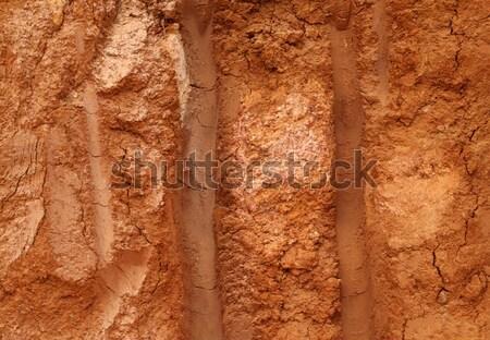 Sol texture terre nature jardin Photo stock © janaka