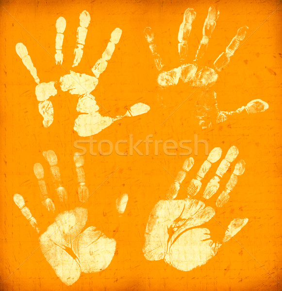 Hand Stock photo © janaka