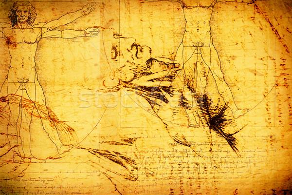 Anatomie kunst papier textuur man mannen Stockfoto © janaka