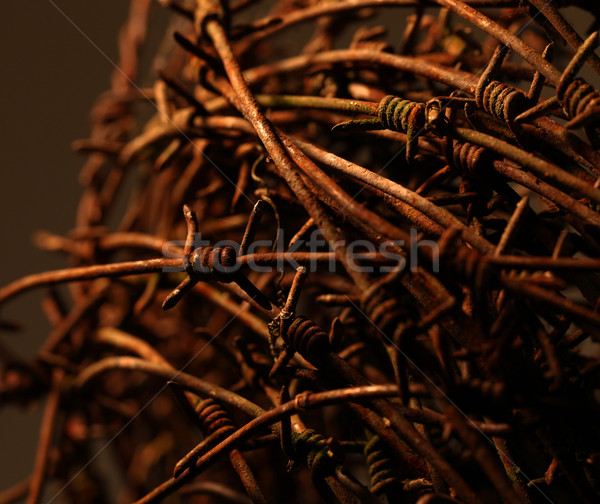 Twisted barb wire Stock photo © janaka