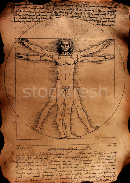 Anatomie art papier texture homme hommes Photo stock © janaka