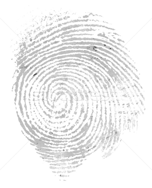 Fingerprint Stock photo © janaka