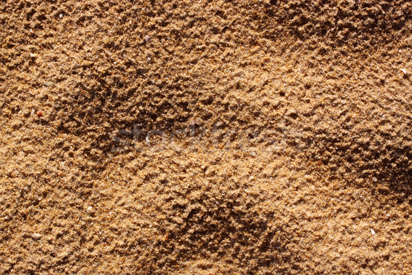 Homok közelkép tenger textúra sivatag narancs Stock fotó © janaka