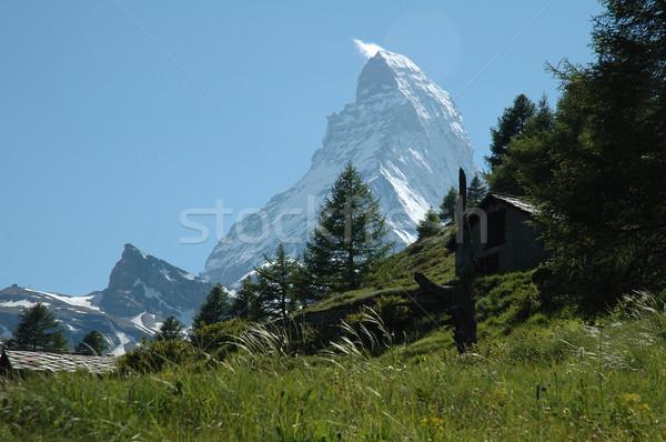 Alpler İsviçre ağaç çim kar Stok fotoğraf © janhetman