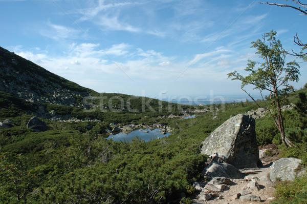Sentier montagnes Pologne République tchèque eau nuages Photo stock © janhetman