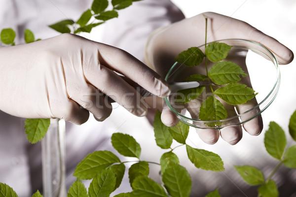Laboratuvar biyo organik modern tıbbi cam Stok fotoğraf © JanPietruszka