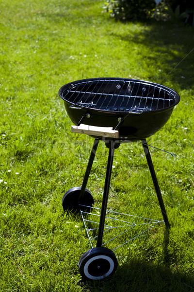 Steak grillezés nyár hétvége fényes színes Stock fotó © JanPietruszka