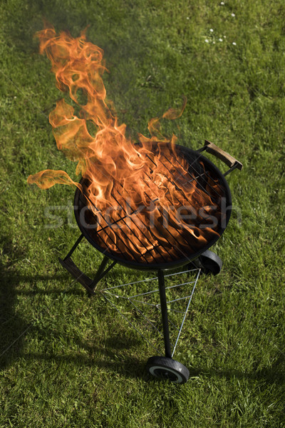 Barbecue grill with fire on nature, outdoor, close up Stock photo © JanPietruszka