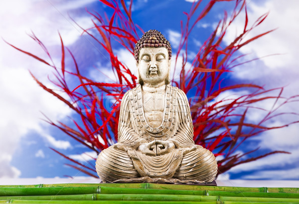 Buddha statue in a meditation  Stock photo © JanPietruszka