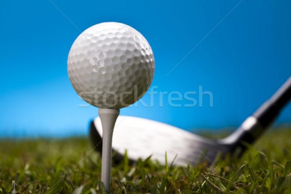 Golfball grama verde azul pôr do sol gramado estilo de vida Foto stock © JanPietruszka