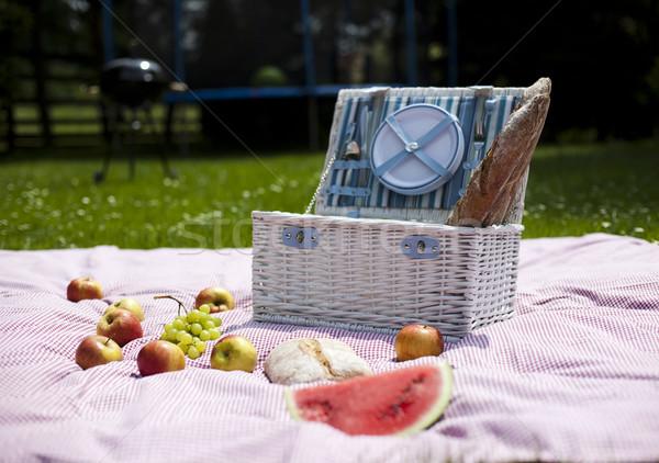 Piknikkosár gyümölcs kenyér bor tavasz fű Stock fotó © JanPietruszka