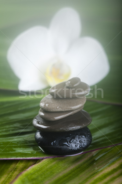 Zen stones, magical ambient atmosphere theme Stock photo © JanPietruszka
