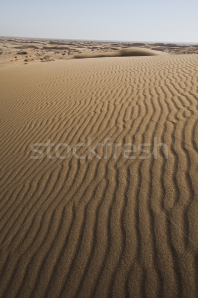 Landscapes in the desert, wonderful saturated travel theme Stock photo © JanPietruszka