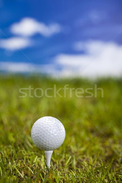 Golf club and ball in grass  Stock photo © JanPietruszka